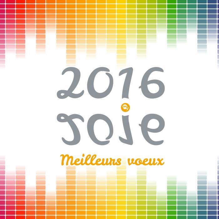 bonne annee 2016 joie
